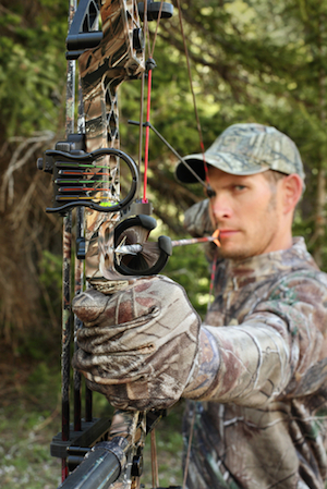The Best Compound Bows'