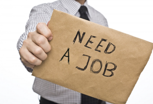 Need a job'