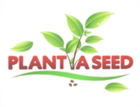 Company Logo For Plant a Seed'