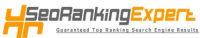 SEO Ranking Expert Logo