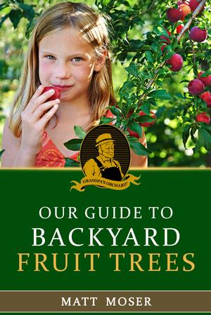 Our Guide to Backyard Fruit Trees