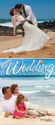 Wedding Tropics Logo