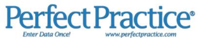 Perfect Practice logo'