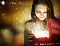 The Shadow Process - Gift