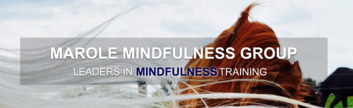 Marole Mindfulness Group'