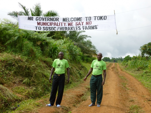 Public protest against palm oil plantation in Cameroon'