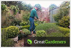 Garden Services in Chester'