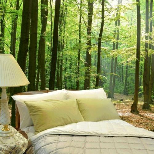 Bedding in the woodsen'