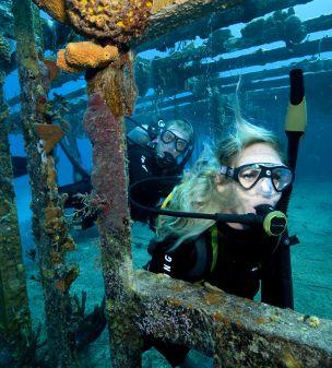 best Phuket Diving'