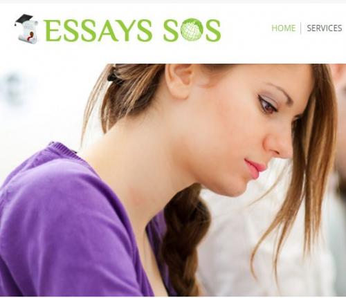 Essay writing service'