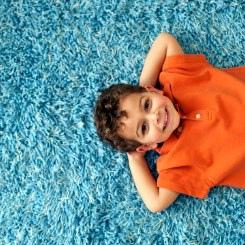 Phoenix Carpet Cleaning Hero'