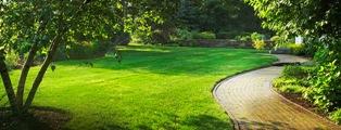 A Superior Edge Lawn Care'