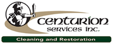 Logo for centurion services'