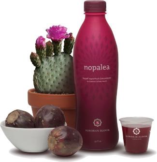 nopalea cactus juice'