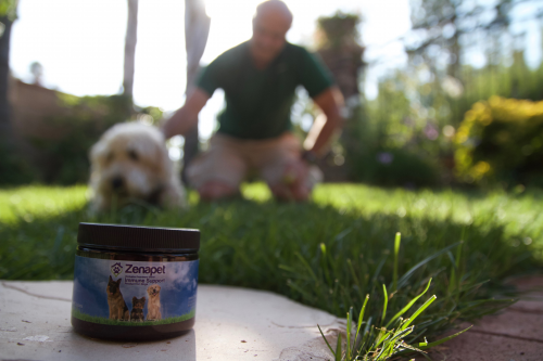 ZENAPET LAUNCHES IMMUNE SUPPORT PRODUCT FOR DOGS'