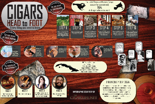 The Cigar Life Infographic'