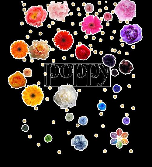 Poppy App'