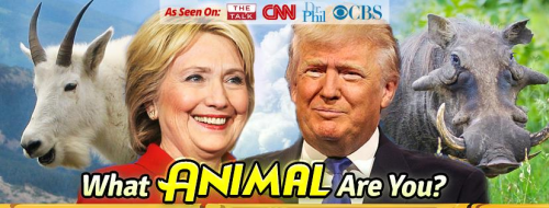 Hillary and Trump Animal Style'