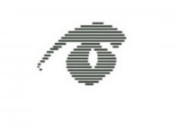 Warm Springs Optometric Group Logo