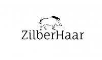 ZilberHaar Logo