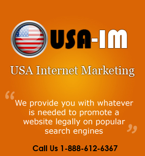 Logo for USA Internet Marketing Company'
