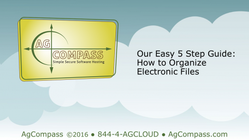 Free Guide: 5 Easy Steps to Electronic File Organization'
