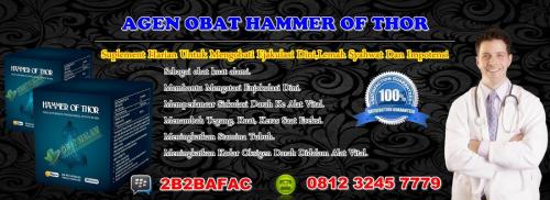 Jual Obat Hammer Of Thor Jember,Agen Obat Hammer Of Thor,Tok'