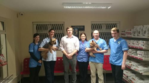 Hillcrest Veterinary Hospital'