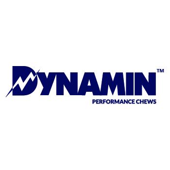 Company Logo For Dynamin'