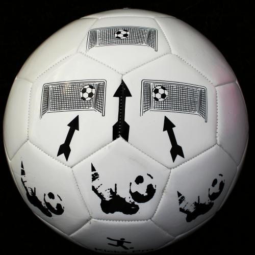 Kicks Pro Soccer Ball'