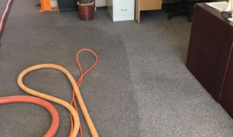 steam cleaning carpet'