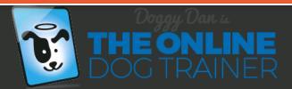 Company Logo For TheDogTrainerGuide.com'