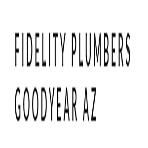 Company Logo For Fidelity Plumbers Goodyear'