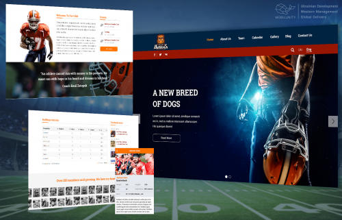 Sports Web and Mobile Development for Startups'