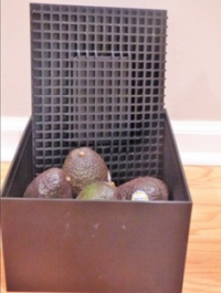 Avocado Ripening Box