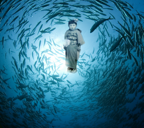 Fish Saw, A Multimedia One-Woman Show by Sachie'