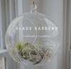 Glass Gardens