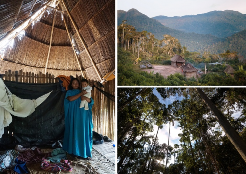 Living Across the Rainforests'