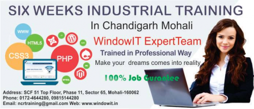 6 months Industrial Training'