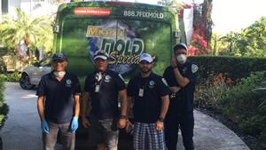Miami Mold Specialist Technicians'