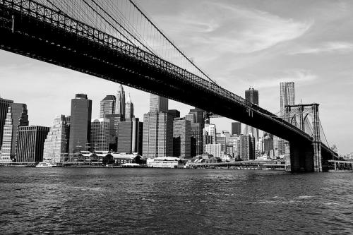 new york'