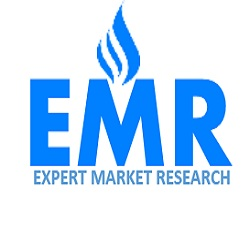 Company Logo For Expert Market Research'