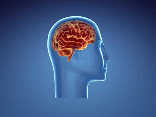 The British CBT & Counselling Service'