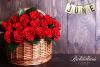 June National Rose Month Richardson's'