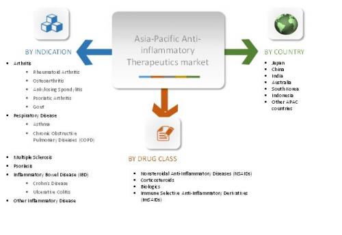 Anti-inflammatory Therapeutics Asia-Pacific Market'