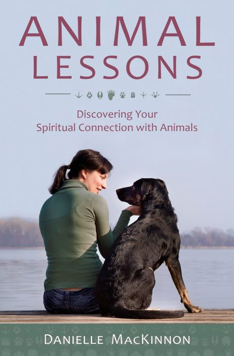 Animal Lessons by Danielle MacKinnon'