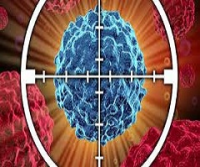 Small Molecule Targeted Cancer Therapy Market