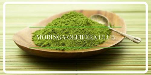 Moringa Oleifera Club'