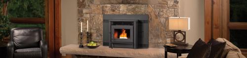 Pellet stove inserts'
