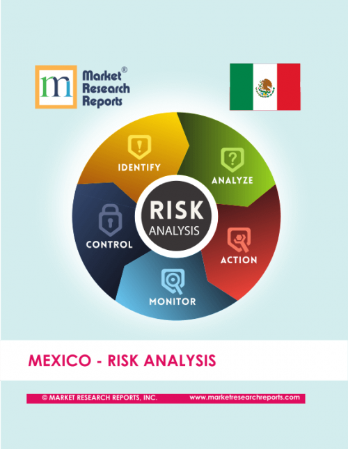 Mexico Risk Analysis Market Research Report'